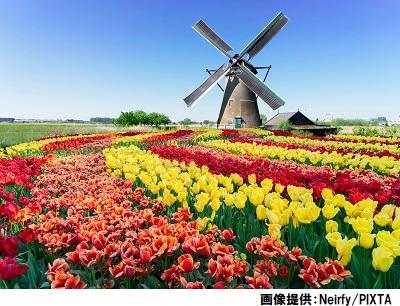 オランダ風車画像400-306.jpg