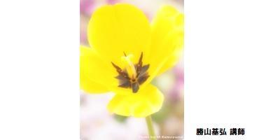 恵比寿_デジタルカメラ入門400-200.jpg