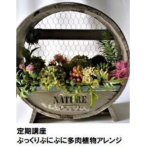 07(ぷっくりぷにぷに多肉植物アレンジ).jpg