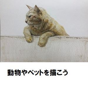 川越02_ペット.jpg