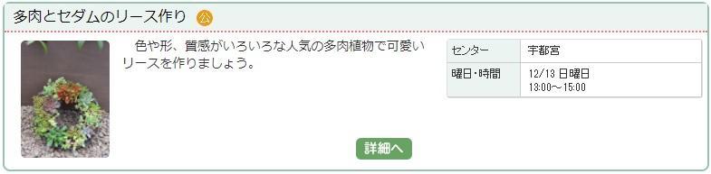宇都宮02_多肉1127.jpg