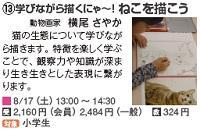 817_横浜_ねこ.jpg