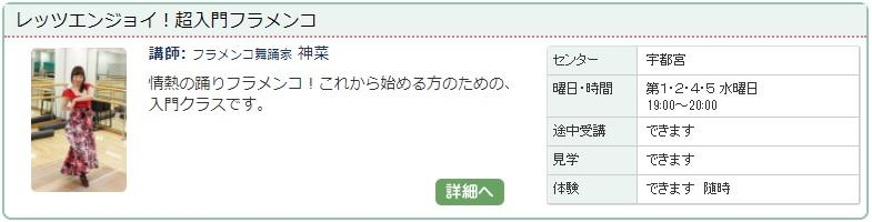 宇都宮1_フラメンコ1112.jpg