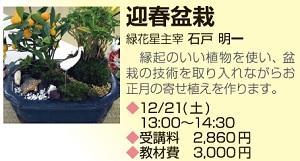 1221_町屋盆栽.jpg