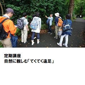 06『自然に親しむ「テクテク遠足」』.jpg