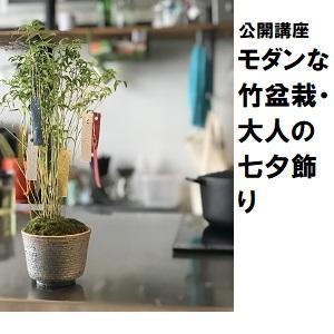 浦和10_七夕修正.jpg