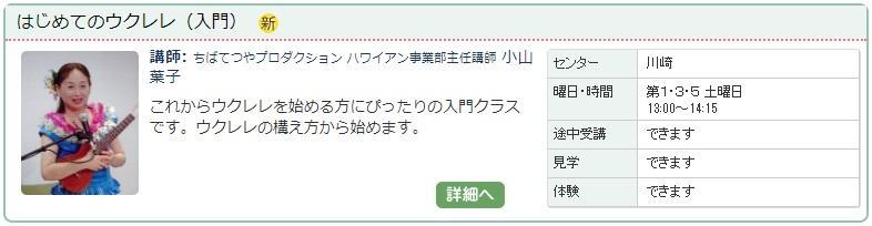 川崎04_ウクレレ0115.jpg