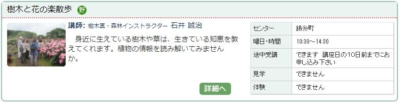 錦糸町2_樹木1016.jpg