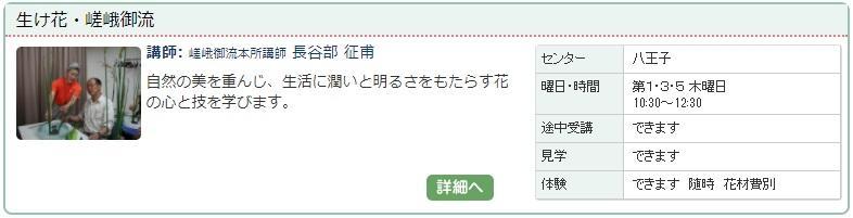 八王子03_嵯峨御1127.jpg