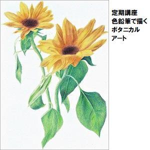 大宮03_ボタニカルアート.jpg
