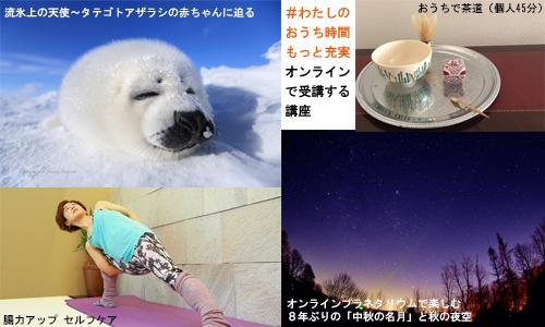 フェス秋500-300.jpg