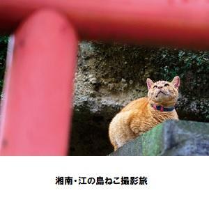 横浜06.jpg