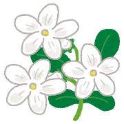lavender_jasmine.png